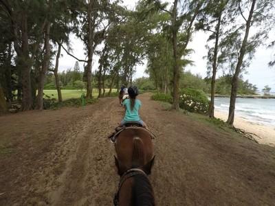 Horseback Riding in Hawaii