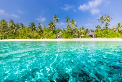 Beach landscape, amazing blue sea and palm trees. Luxury summer vacation