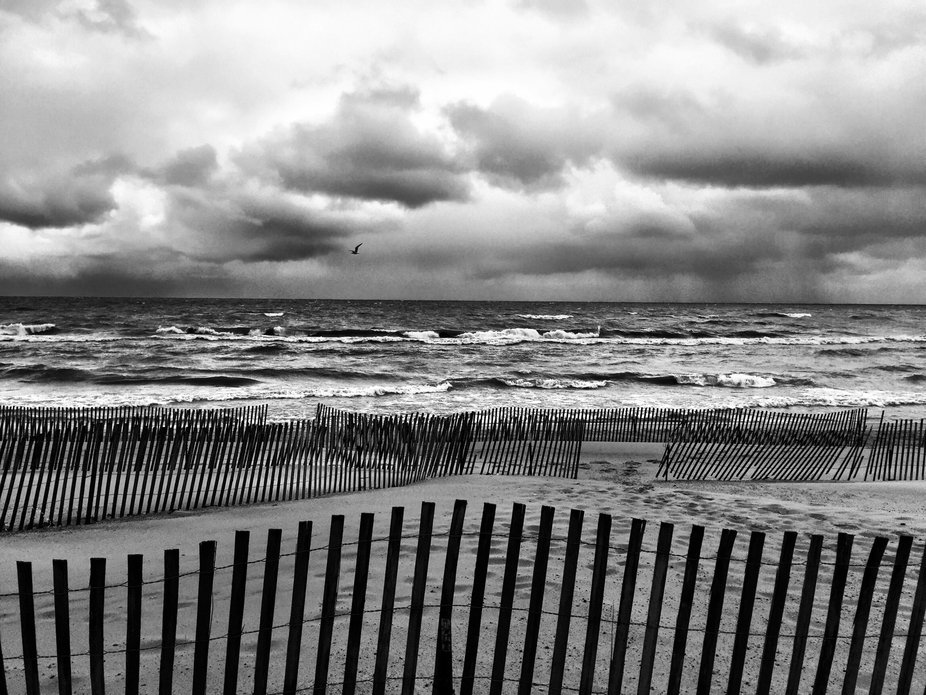 Blustery Day at Oval Beach