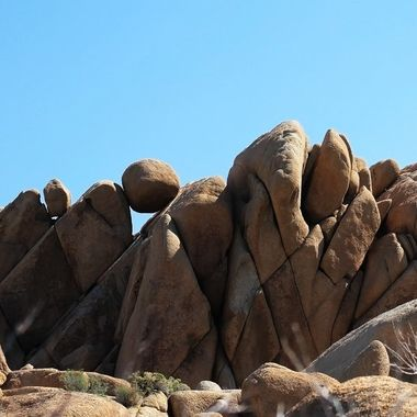 JoshuaTreeNationalPark_CA49