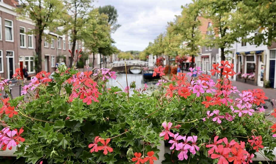 This city is located in the South of Holland, and it's called Delft. Here you will find,...