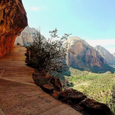 Making my way up to Angels Landing. One good thing about photography. It makes you stop and take it all in while you wait for people to get out of the shot. ???? #love #hiking #dashboarddestinations #RoamThePlanet #planetwanderlust #adventure  #discoveryl