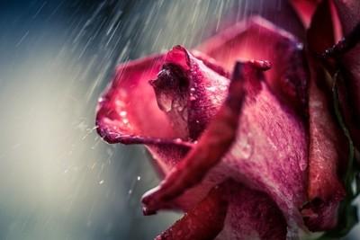 Let it Rain!