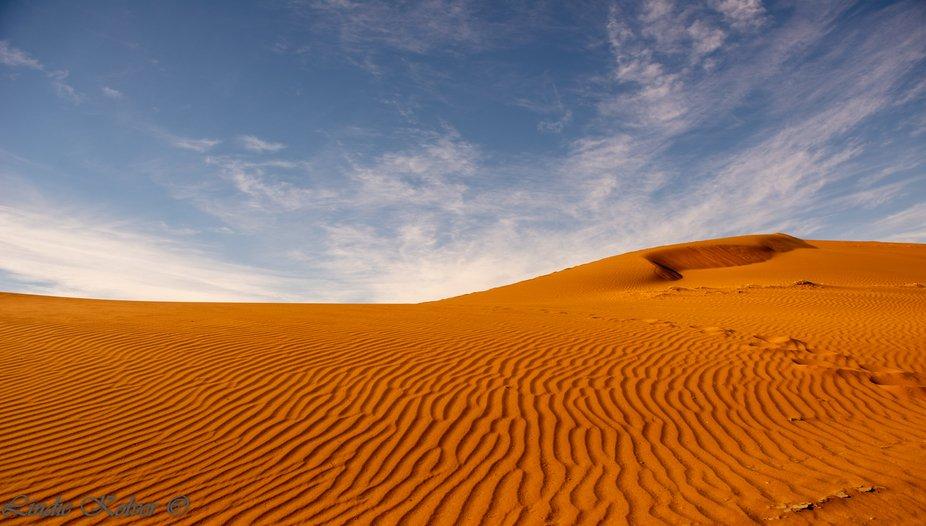 Ripple-Dunes - Sossusvlei