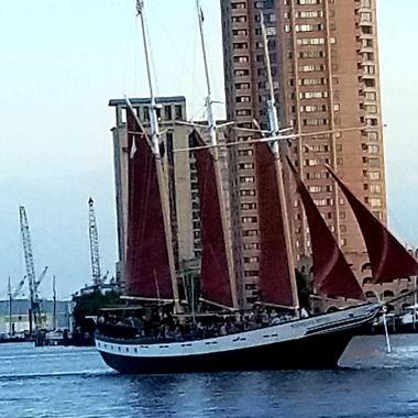 Nice sail boat.