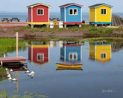 Sheds in Many Colours