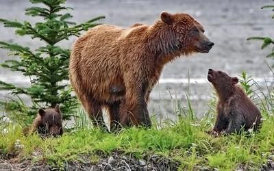 Quiet family moment