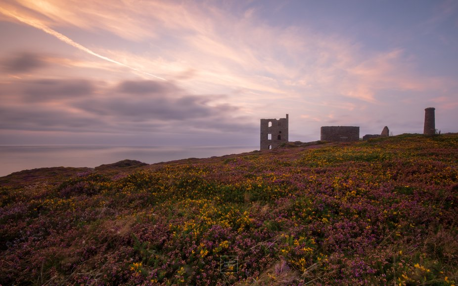 Visiting this place many time and managing to get a photography of sunset with colourful heather ...