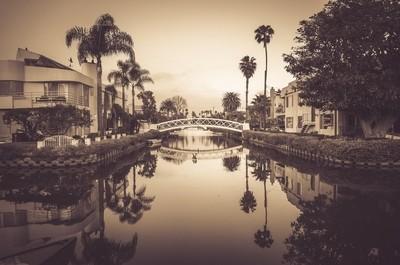 Cali Gold - Venice Canals - Venice, California