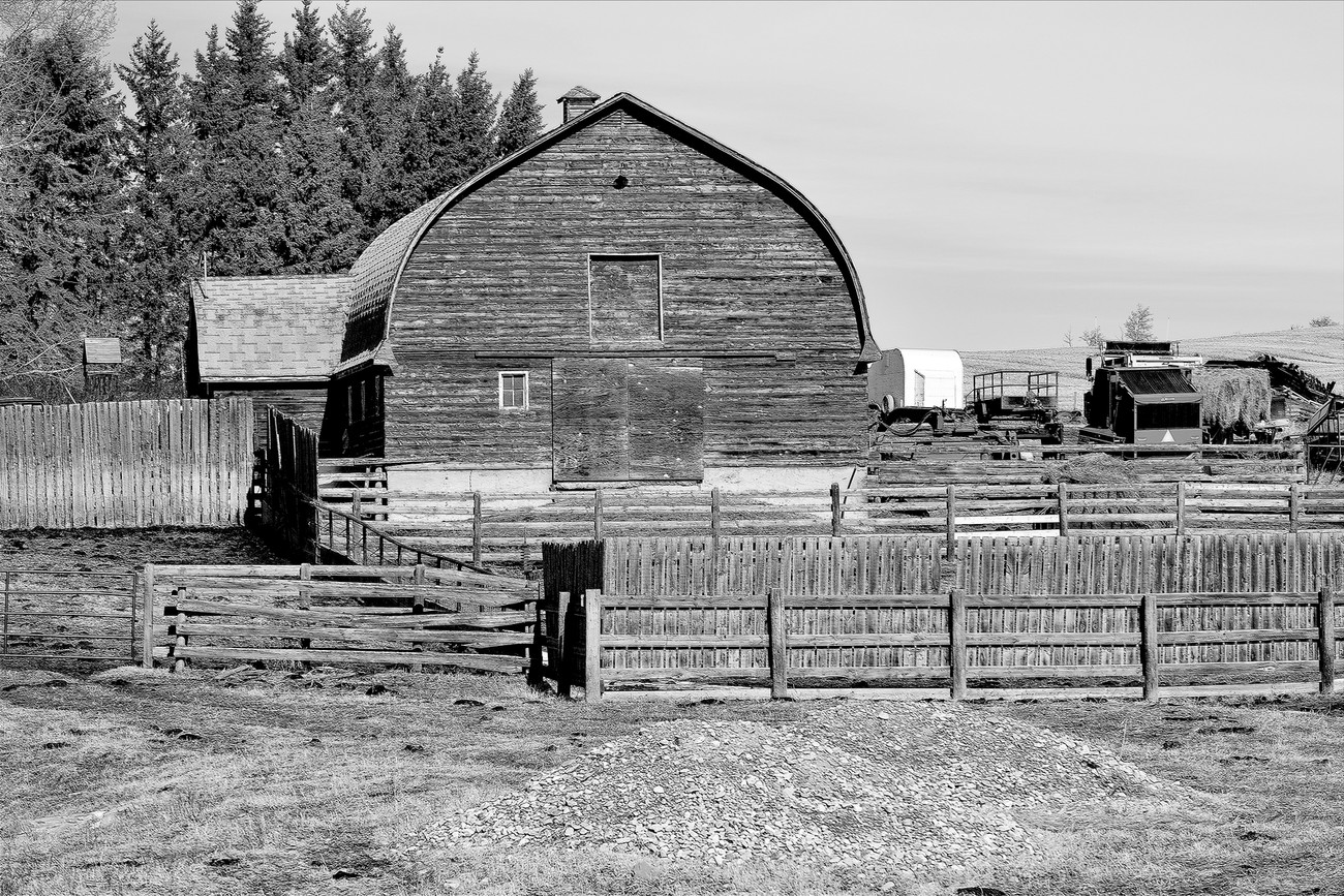 Black and White Barn, Alberta Farm