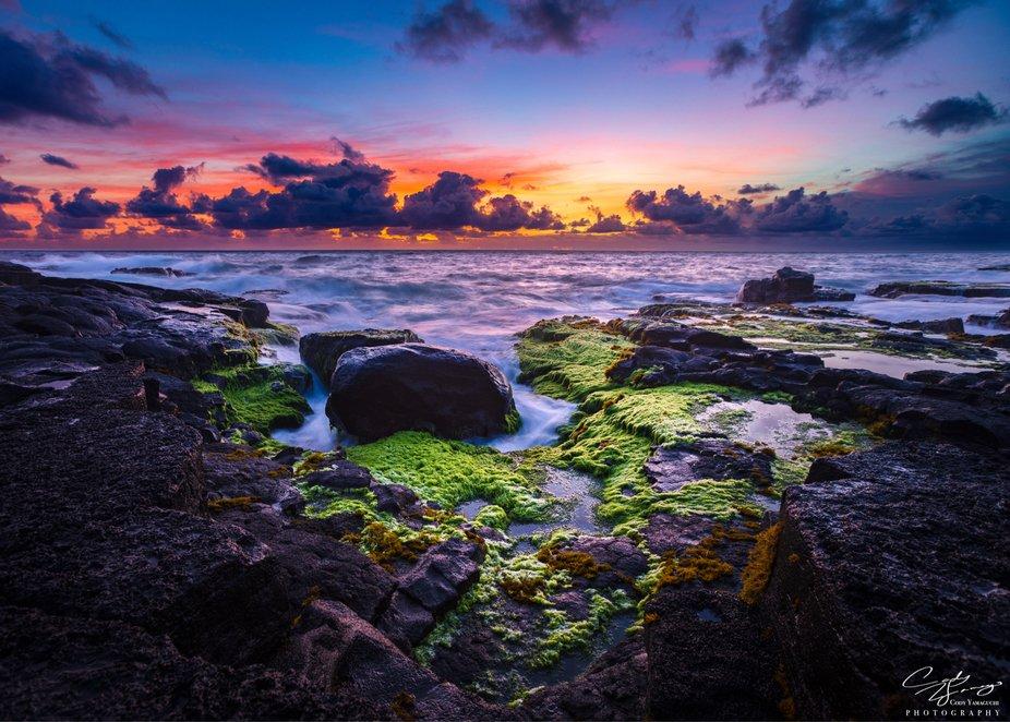 Makuu Hawaii