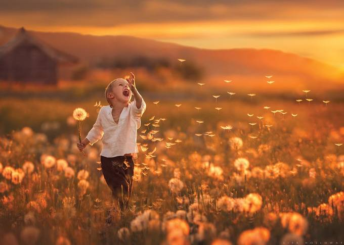 Chasing Magic by lisaholloway - Monthly Pro Photo Contest Vol 44