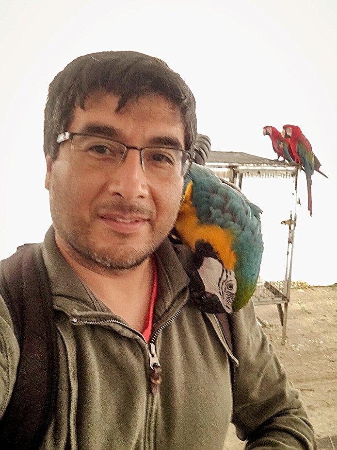 Selfie con Guacamayo en el hombro