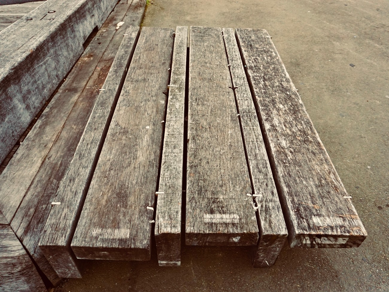 a bench on Wellington's waterfront shows the gathering of wind, rain, salt spray