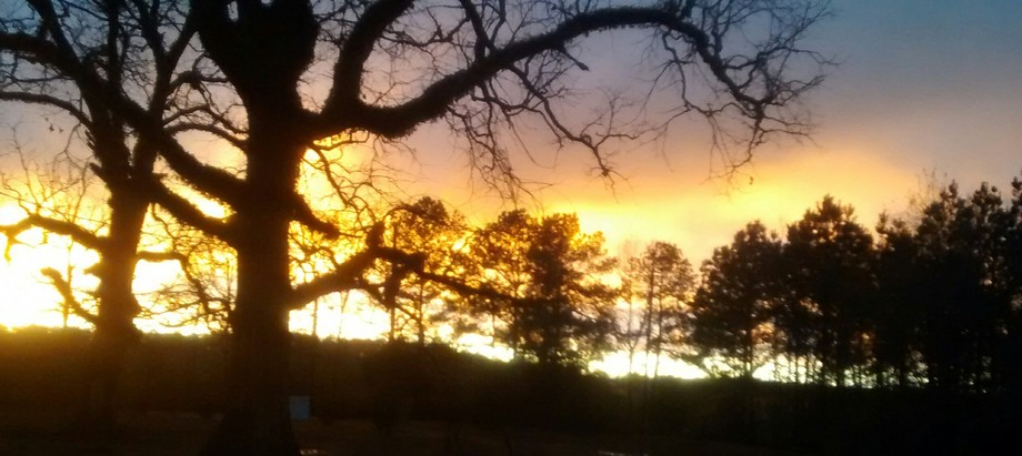 a beautiful sunset in front of my house. .A Golden Endng to a great day.