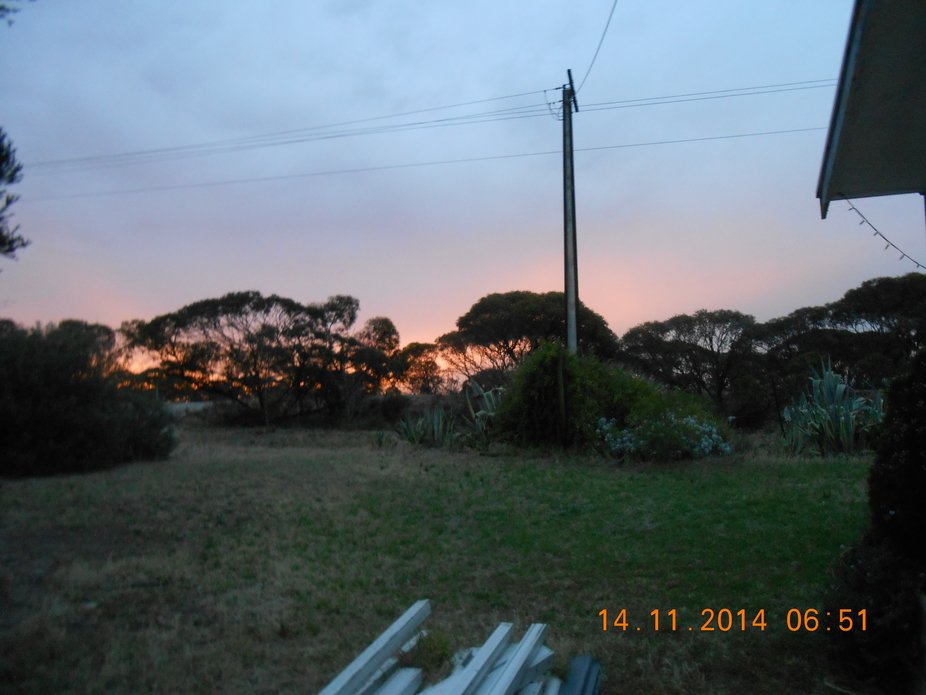 My front yard at sunset