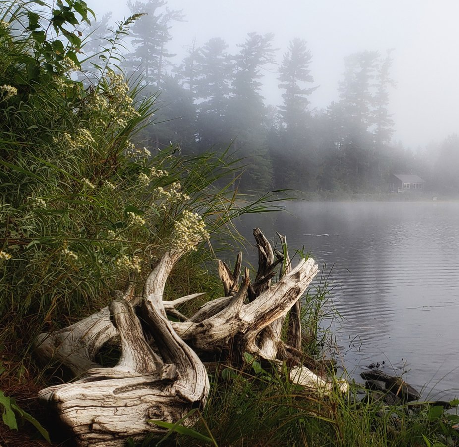 Early signs of fall were had this August as nighttime temperatures plummeted to single digits. co...