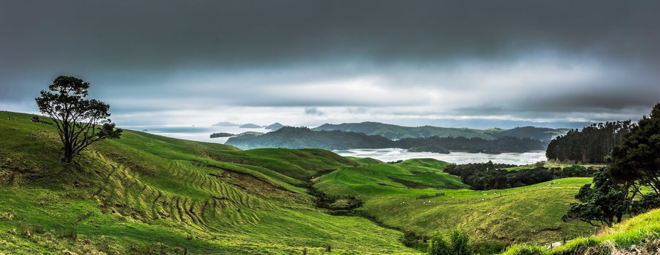 Road trip in New Zealand's Coromandel Peninsula on top of the hill over looking the bay