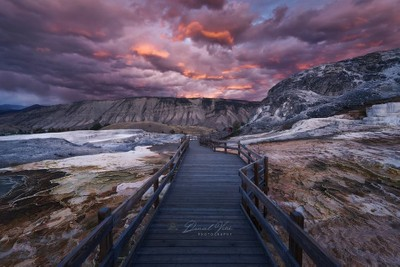Mammoth Hot Springs at Sunset, Yellowstone National Park