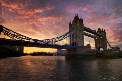 Sunset Towers