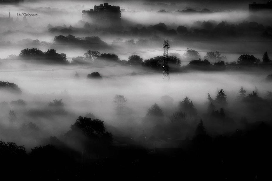 Rolling Fog BW