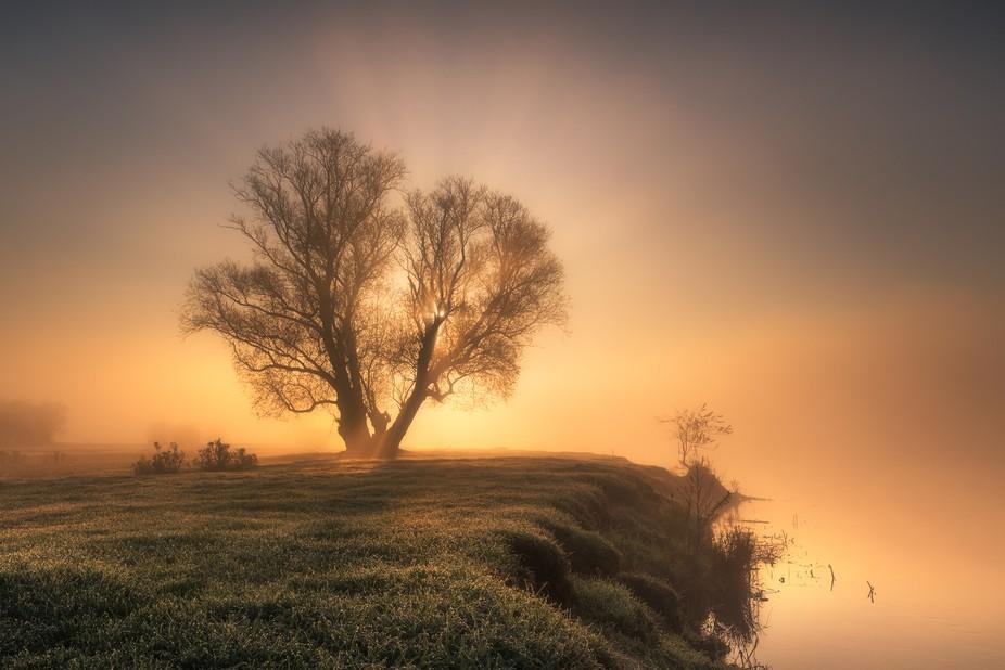 Warta River Valley, Poland...