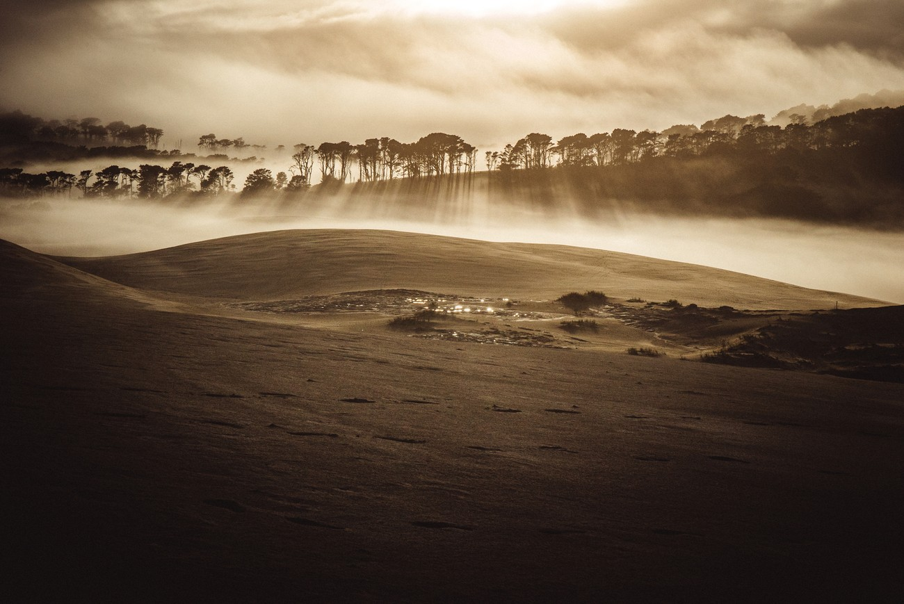 I was wandering on the giant sand dunes early in the morning, a golden time when the giant dunes were mine.