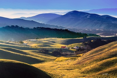 Spring Morning in Central California Ranchland