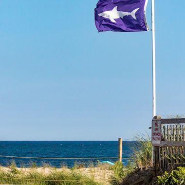 Beach Day... UM!!!