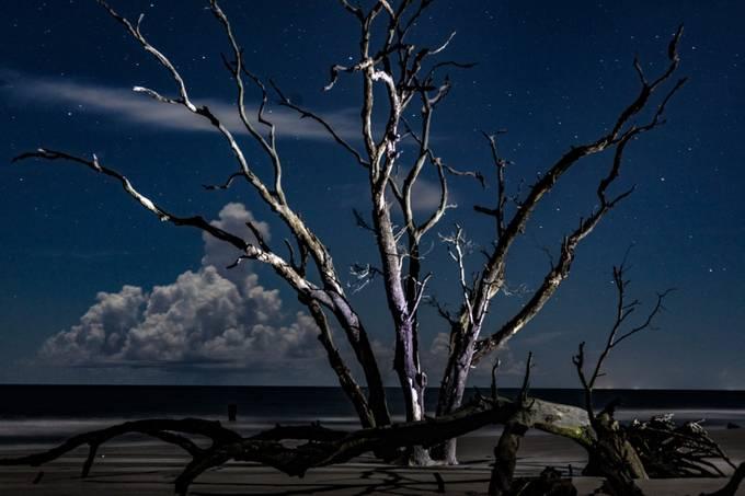 before the sunrise on Bulls Island in Awendaw, South Carolina