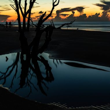 sunrise on Bulls Island in Awendaw, South Carolina