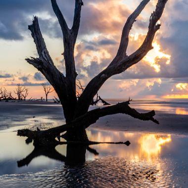 Sunrise on Boneyard Beach Bulls island in Awendaw, South Carolina