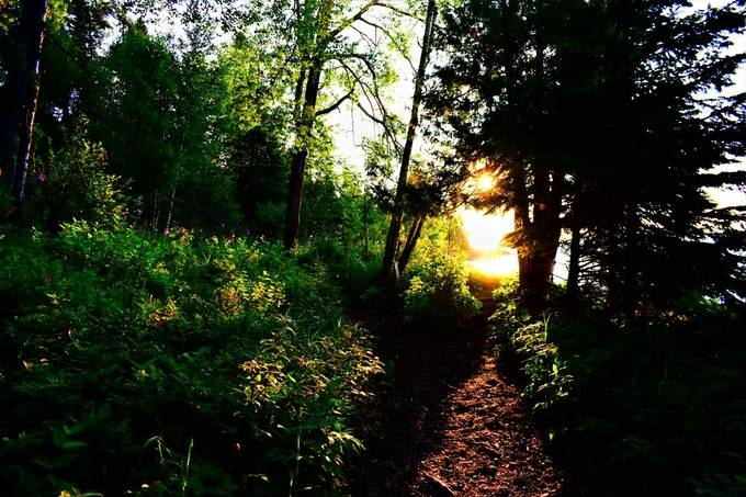 Sunrise on the trail out of Lutsen Resort on Lake Superior