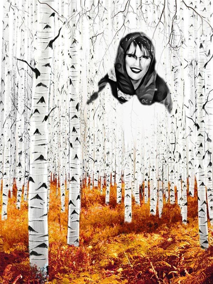 Im Wald der Geister und Mythen