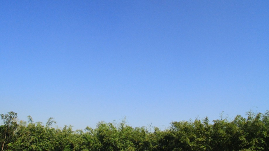 The sky was cloudless & the Day was Sunny, I Captured the Moment with Unlimited Blue.