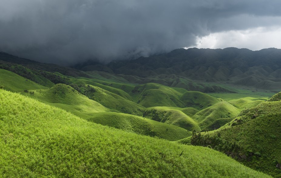 Dzukou Valley, Nagaland & Manipur, India  This landscape is like nothing I've ever enco...