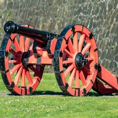cannon-0582