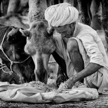 Bond of human with their animals