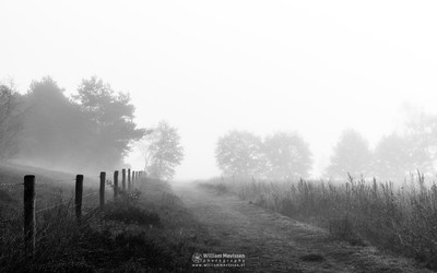 Fading Path Bergerheide