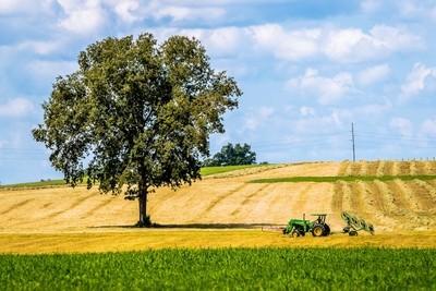 Farming in Rural South Carolina