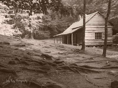 Old Bud Ogle Cabin