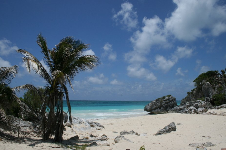 This beach is Cozumel is one of the most beautiful in the world.