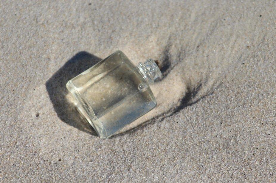 Found this beach treasure today :)