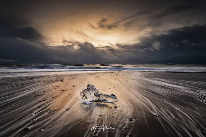 Crocodile head by Markus_van_Hauten - Social Exposure Photo Contest Vol 17