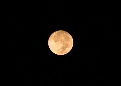 Orange Harvest Moon