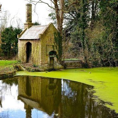 Millhouse Reflection : CLR