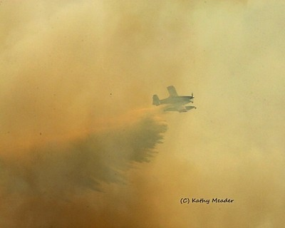 Dauntlesd Fire boss on the attack