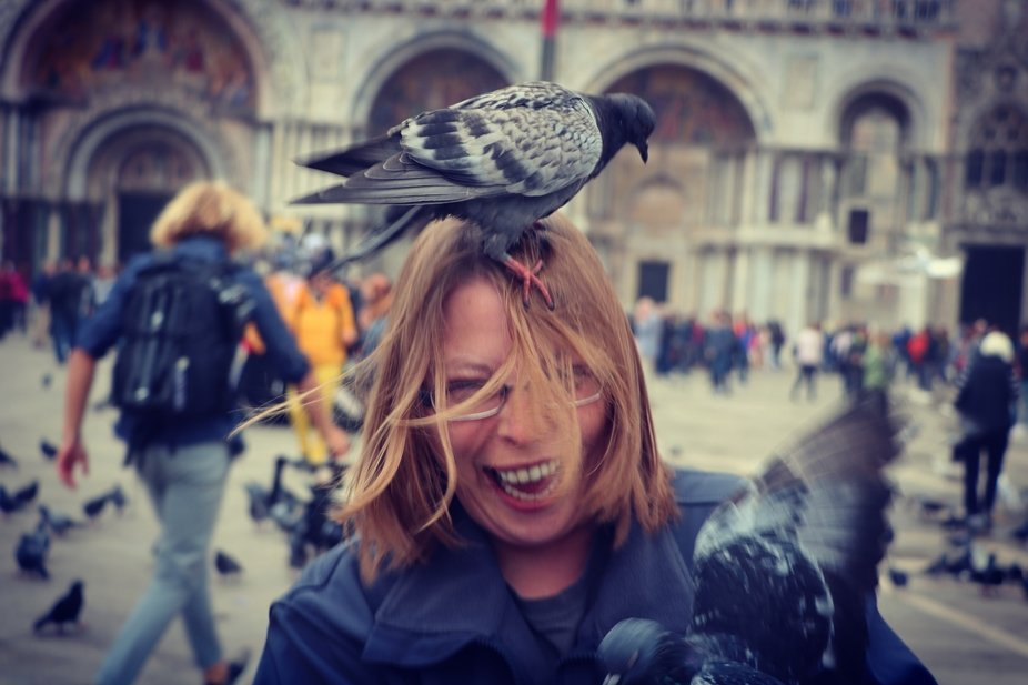 My girlfriend and I were walking through St Mark's Square in Venice. She was eating a br...