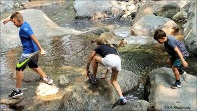 Exploring the Stream in Yosemite