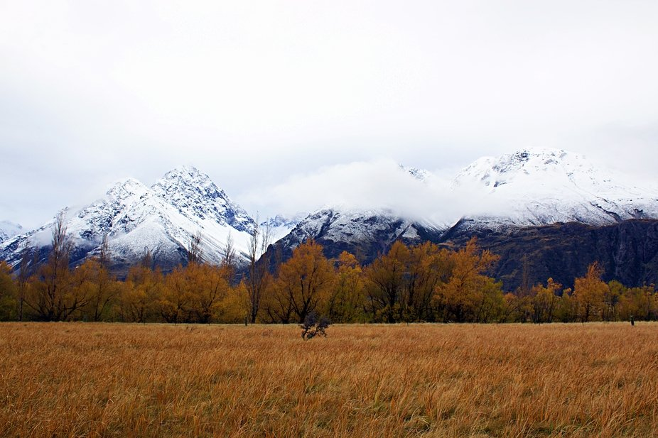 This was on the Road to Mt Cook/Aoraki in new Zealand during Autumn!